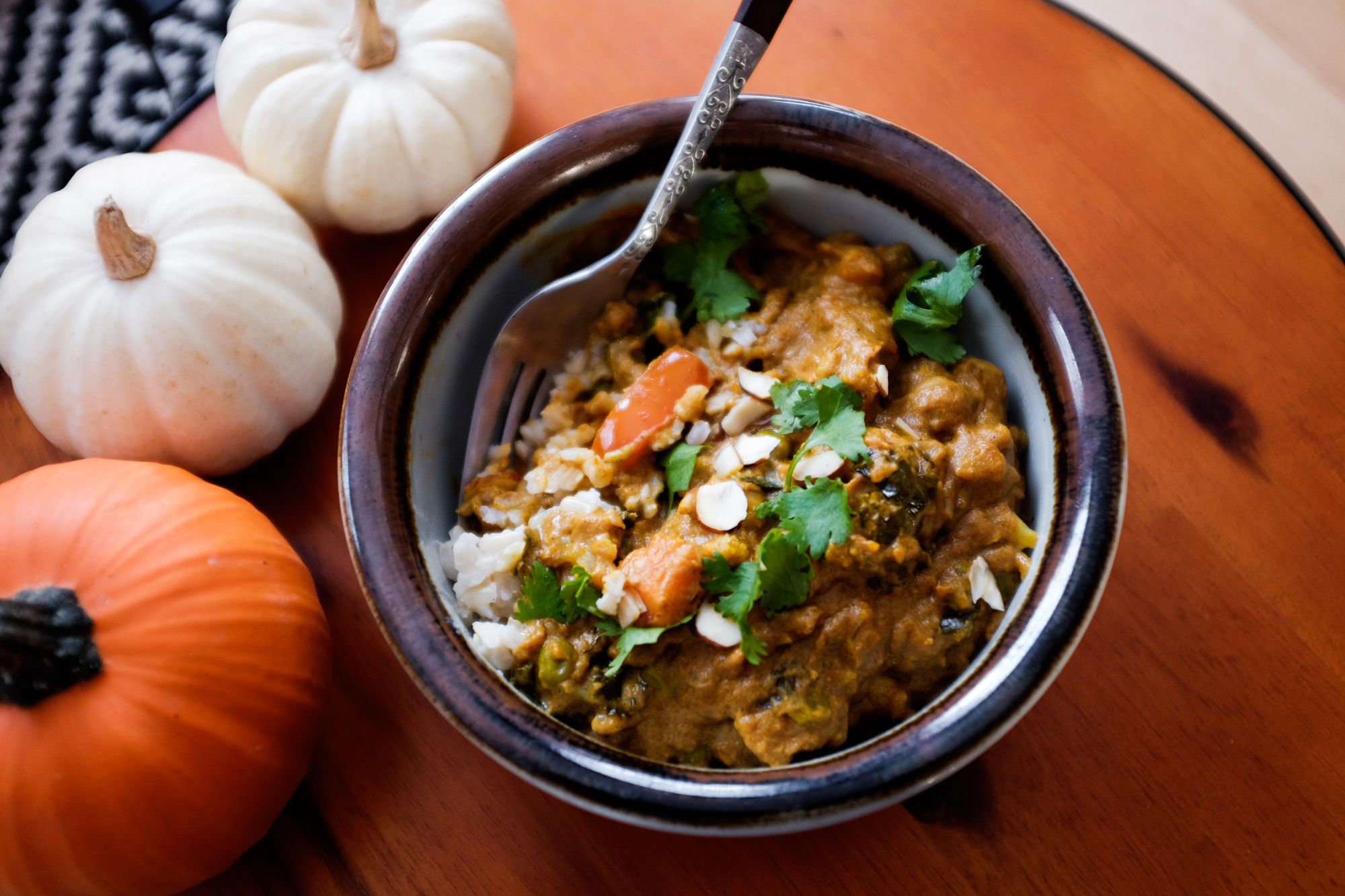 03-vegan-curry-oct-2015-web-6656