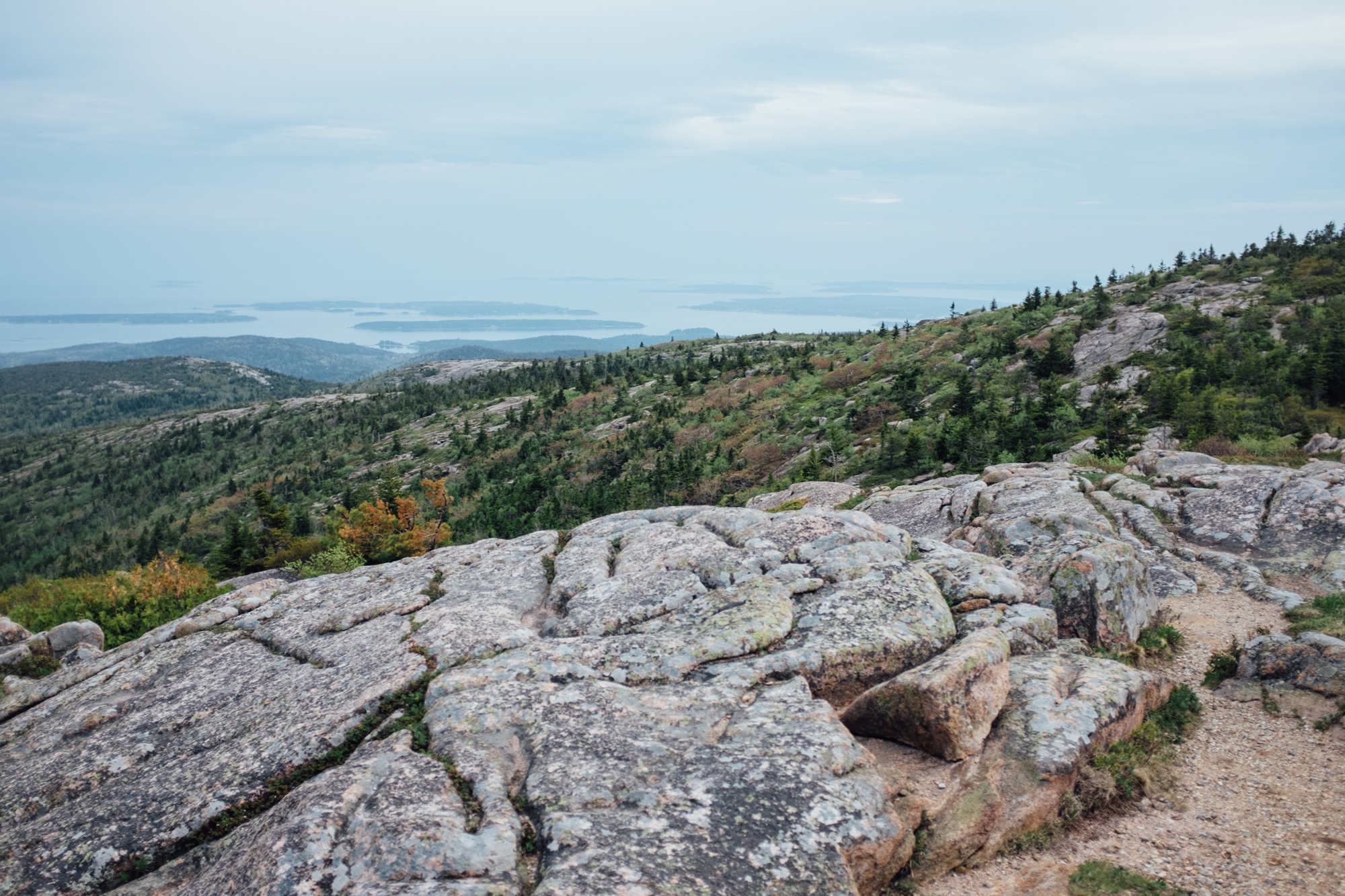 The view from the top of Cadillac Mountain.